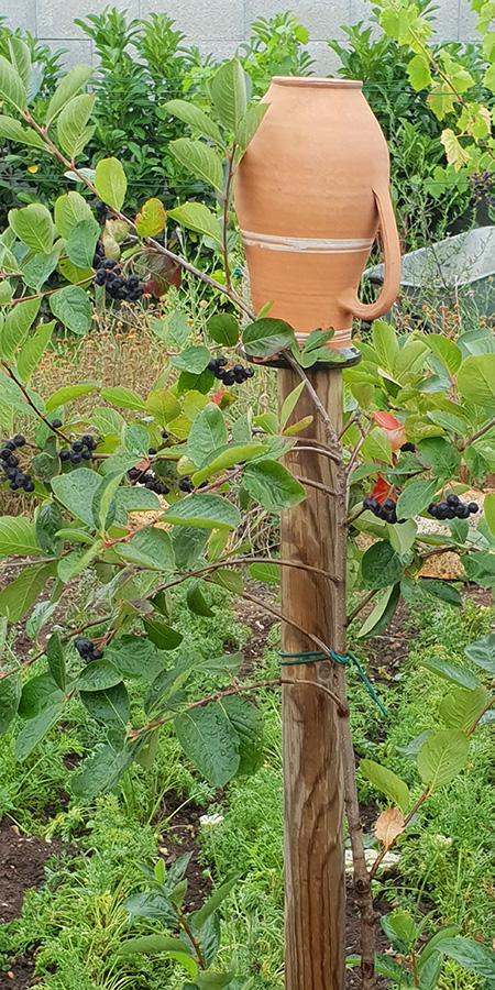 Tonkrug im Caprahof-Garten